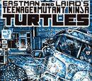 Teenage Mutant Ninja Turtles nr 3 (Mirage)