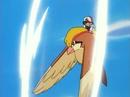 Ash Pidgeot Gust.png