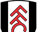 Fulham (2014-15 home)