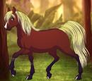 Club de Equitación