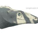 Longocuspis maturus