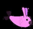 Pez conejo