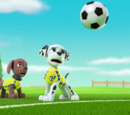 Zuma/Gallery/Pups Save the Soccer Game