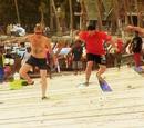 Flipper race