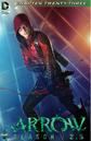 Arrow Season 2.5 chapter 23 digital cover.png