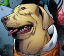 Cosmo (Dog) (Earth-616)