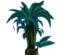 Луковичное дерево