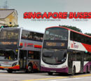 Singapore Buses Wiki