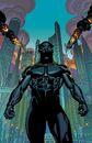 Black Panther Vol 6 1 Textless.jpg