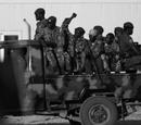 Western Gahnia War