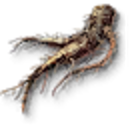 Tw3 allspice root.png