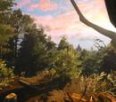 Hotsch Woods