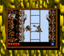 Donkey Kong Land 2 Stages