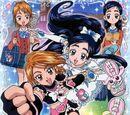 Futari wa Pretty Cure DVD