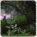 Battle Mode - Deep Woods.png