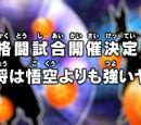 Episodio 29 (Dragon Ball Super)