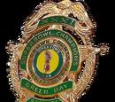 Green Bay Packers Badge