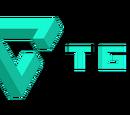 TGN Partner