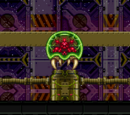 Main Deck/Scar's version