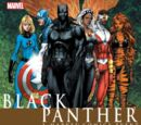 Black Panther: Civil War TPB Vol 1 1