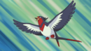 Ash Swellow.png