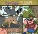 The Clarence Field Guide to Animals