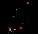 1969 French Grand Prix