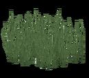 Sago Water Grass (Z-Studio)