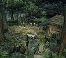 Obóz Anoga