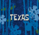Texas (voice-over) (transcript)
