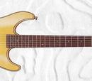 Nylon string guitar models