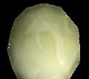 Perła