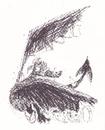 Windwalker schützt Hicks Buch.png