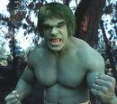 David Banner (The Incredible Hulk)