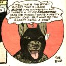 Ace the Bat-Hound Earth-One 0005.jpg