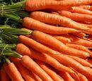 Carrots (the true enemy!!!!!!!)