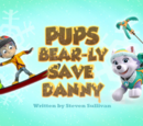 Pups Bear-ly Save Danny