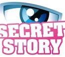 Secret Story France 4