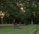 Storybrooke Graveyard