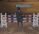 Hannah Lightningstar/More Horses