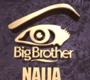 Big Brother Nigeria 2