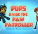 Pups Raise the PAW Patroller