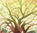 Star's Tree of Hope