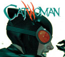Catwoman: Run Like Hell (Collected)