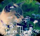 Fallen Thorns