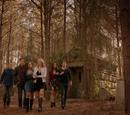 Mystic Falls Gang