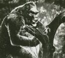 King Kong (RKO films)