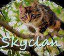 SkyClan (chacobunny4)