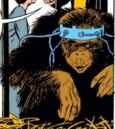Neo-Apes from Iron Man Vol 1 79 0001.jpg