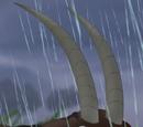 Sable Antelope 1
